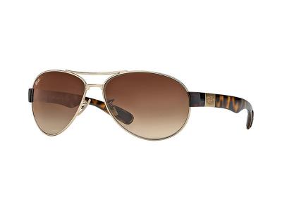 Sonnenbrillen Ray-Ban RB3509 001/13