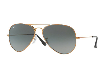 Sonnenbrillen Ray-Ban Aviator Gradient RB3025 197/71