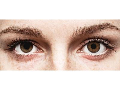TopVue Color Tageslinsen - Brown - ohne Stärke (10Linsen)