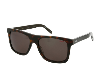 Sonnenbrillen Hugo Boss HG 1009/S 086/IR
