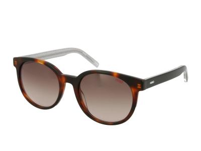 Sonnenbrillen Hugo Boss HG 1011/S 086/HA