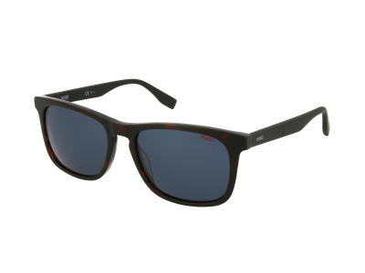 Sonnenbrillen Hugo Boss HG 0317/S 086/KU