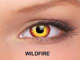 ColourVUE Crazy Lens - ohne Stärke (2Linsen)