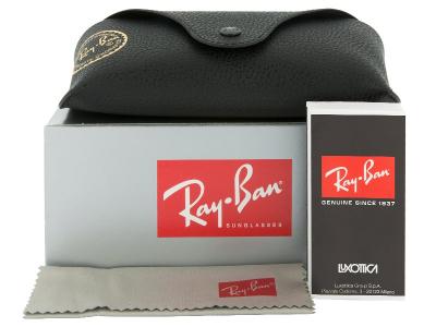Sonnenbrillen Sonnenbrille Ray-Ban Justin RB4165 - 622/T3 POL  - Inhalt der Packung (Illustrationsbild)