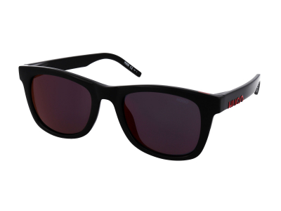Sonnenbrillen Hugo Boss HG 1070/S 807/AO