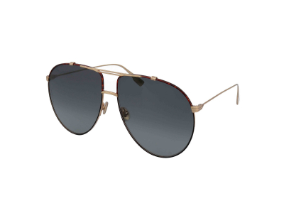 Sonnenbrillen Christian Dior Diormonsieur1 XWY/1I