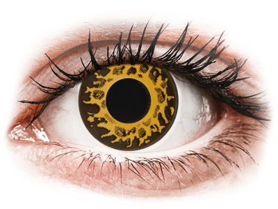 CRAZY LENS - Cheetah - Tageslinsen ohne Stärke (2 Linsen)
