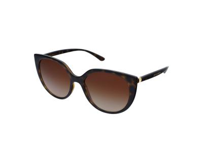 Sonnenbrillen Dolce & Gabbana DG6119 502/13