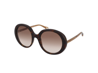 Sonnenbrillen Chloe CH0007S 004