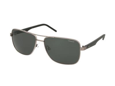 Sonnenbrillen Polaroid PLD 2042/S FAE/Y2