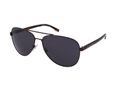 Sonnenbrillen Hugo Boss - Hugo Boss Boss 0761/S 25B/IR